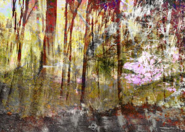 den-tavse-skov 04